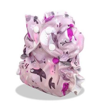 Cloth Diaper Cover, Pink Background with Birds Love Happens by AppleCheeks Size 1 (7-20 lbs)
