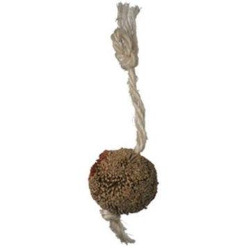 Caitec 40012 Bristle Ball - Small