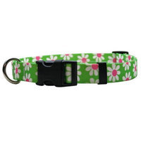 Yellow Dog Design GD100XS Green Daisy Standard Collar - Extra Small