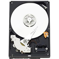 Western Digital RE3 WD5002ABYS 500GB Internal Hard Drive - Bulk