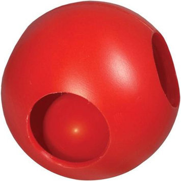 Hueter Toledo Inc. PAW-zzle Ball - 10 Inch