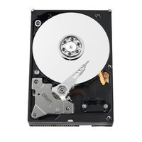 Western Digital WD Blue WD2500AAJB 250GB 3.5 Internal Hard Drive - IDE - 7200 - 8MB Buffer - Bulk