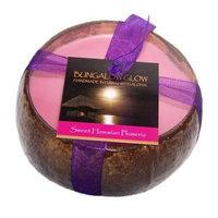 Bubble Shack Hawaii 492773500946 Sweet HI Plumeria Coconut Candles - Pack of 2