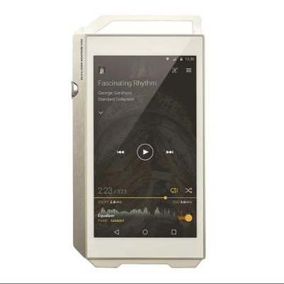 Pioneer XDP-100R-S Digital Audio Player - Silver