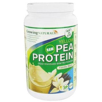 Growing Naturals Raw Yellow Pea Protein - Vanilla Blast