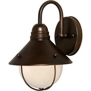 Unbranded 12-in Rustic SienOutdoor Wall Light LW10410141
