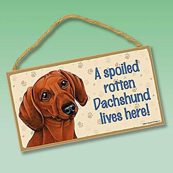 Sjt Enterprises Doxie Spoiled Rotten Dog Lives Here Wooden Sign