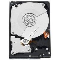 Western Digital RE3 WD1002FBYS 1TB SATA/300 7200rpm 32MB Buffer - 3.5 Internal Hard Drive - Bulk