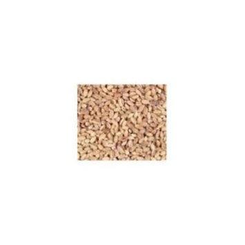 Bulk Grains 100% Organic Hulled Barley Bulk 5 Lbs