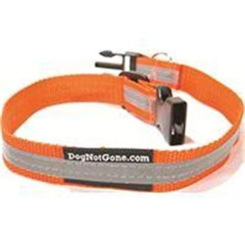 Dog Not Gone-Reflective Dog Collar- Orange Medium COLLAR-MED