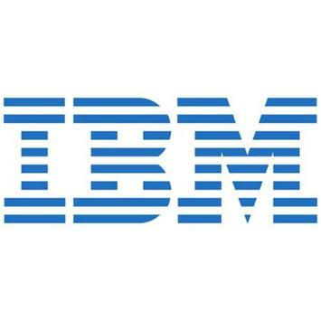IBM 600GB 2.5