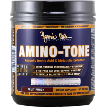 Ronnie Coleman Signature Series Amino-Tone Fruit Punch 390 g