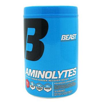 Beast Sports Aminolytes Beast Punch, 400 Gram