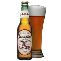 Yuengling Beer Traditional Lager Original Amber