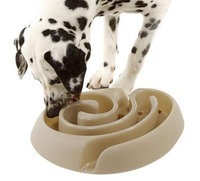 Maze Dog Food Bowl