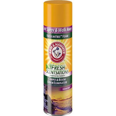ARM & HAMMER™ Fresh Scentsations Carpet Odor Eliminator Island Mist  Foam