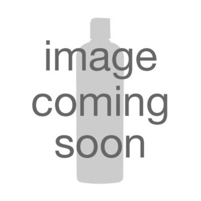 Jac-O-Net Silver Elegance Chignon Hairnet