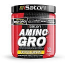 Isatori Sports Nutrition Amino Gro