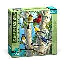 BUFFALO GAMES, INC. BGI HAUTMAN 1000PC Puzzle Songbird Favorites - BUFFALO GAMES, INC.