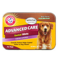 ARM and HAMMER Advanced Care Beef Flavor Dental Mints