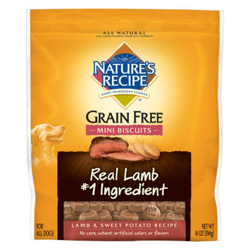 Nature's Recipe Natures Recipe Grain Free Natural Lamb and Sweet Potato Mini Biscuits Dog Treat