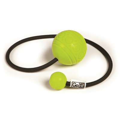GoFit GoBall Therapeutic Massage Ball on a Rope with Therapy Poster