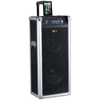 QFX - Portable Bluetooth PA Speaker