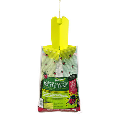 Sterling International Rescue Japanese Beetle Trap