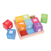 Bigjigs Toys First Picture Blocks Set