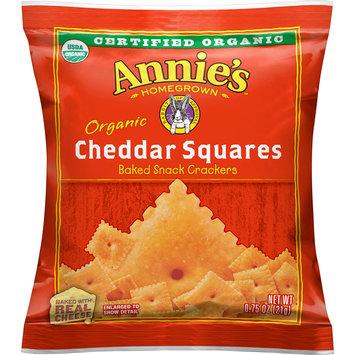 Annie's(tm) Homegrown Organic Cheddar Squares