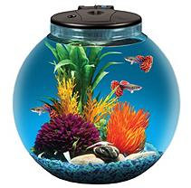 KollerCraft 3 gal Aquarium Kit with 7 color LED light, power filter, 4