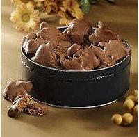 A L Schutzman Chocolate Turtles Gift Tin - 23 ozs.