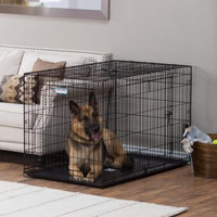 Precision ProValu Great Crate Double Door Dog Crate with FREE Pad - Black