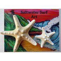 Set of 2 Hand Made Starfish Barrettes