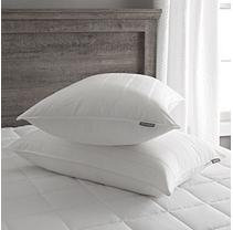 Eddie Bauer Soft Plus Hypoallergenic Rolled Down Pillow With 300 TC Cotton Protector - King