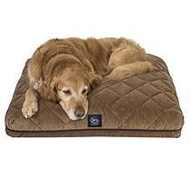 Serta Perfect Sleeper Kensington Pet Bed, 36