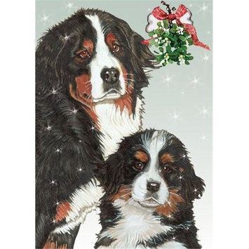Pipsqueak Productions C559 Bernese Holiday Boxed Cards