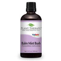 Plant Therapy Balm Mint Bush Essential Oil 100 mL (3.3 fl. oz.) 100% Pure, Undiluted, Therapeutic Grade