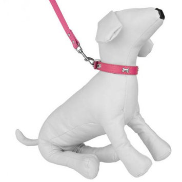 Cue Cue Pet Dog Collar & Leash /w Embellished Bone Charms for Walking or Exercise (Pink)