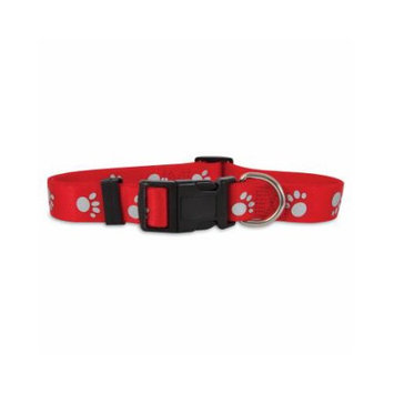 PETCO 3/8 Single Ply Nylon Reflective Dog Collar in Red, Small