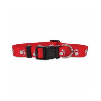 PETCO 3/8 Single Ply Nylon Reflective Dog Collar in Red, Small