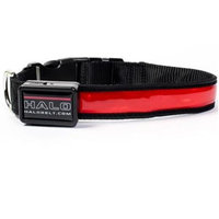 Halo Mini LED Safety Dog Collar Red [Options : Large]