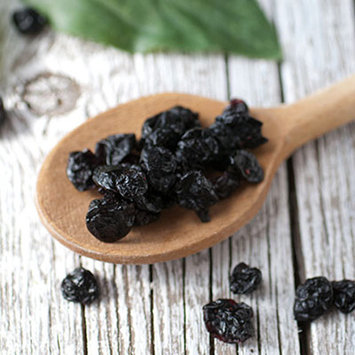 High Valley Orchard Dried Blueberries-8 oz Bag