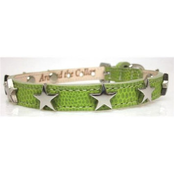 Around the Collar 2004C7LME8 Lime Lizard Grain Leather Collar with Nickel Stars 8 inch x . 5 inch