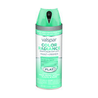 Valspar Color Radiance Nautical Indoor/Outdoor Spray Paint 407.0084508.076