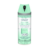 Valspar Color Radiance Destiny Indoor/Outdoor Spray Paint 407.0084514.076