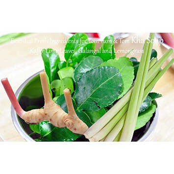 Fresh Tom Yum | Tom Kha Soup Ingredients Set. Make Authentic Tom Yum Soup 4 -6 Serving. ต้มยำ