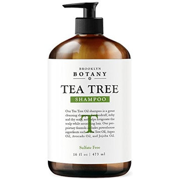 Tea Tree Oil Shampoo 16 fl oz - Anti Dandruff Shampoo For Dry Itchy & Flaky Scalp - Sulfate Free, Anti-fungal, Anti-Bacterial Cleanser - Prevents Head Lice & Thinning - Brooklyn Botany