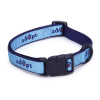 Casual Canine Adopt Dog Collar 14 to 20in Blue