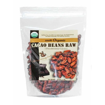 Indus Organics Raw Cacao Beans, 1 Lb Bag, Sulfite Free, No Added Sugar, Premium Grade, High Purity, Freshly Packed